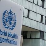"""""""No hay ninguna prueba"""": OMS advierte que 'pasaportes de inmunidad' podrían propagar la pandemia"""