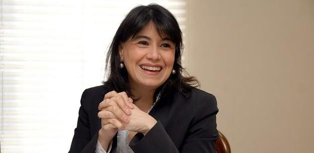 Diputados plantean exclusividad de funciones para los consejeros del CDE